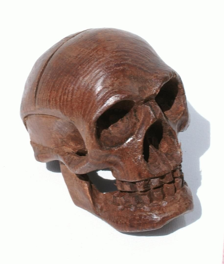 Brown wooden skull carving mythical magic fantasy talisman death